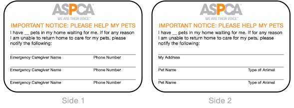 putting a pet provision in a will