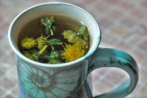 dandelion tea for diabetes
